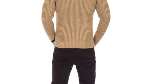 Quel type de pull homme ?